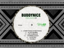 Buddynice - Life & Dreams (Redemial Mix)
